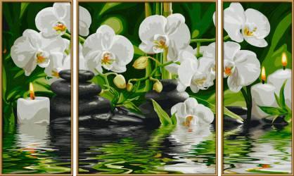 Magnolien Malen nach Zahlen 50x80 cm von Schipper Triptychon