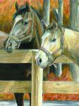 Malen nach Zahlen mit Buntstifte CPN-16 Pferde