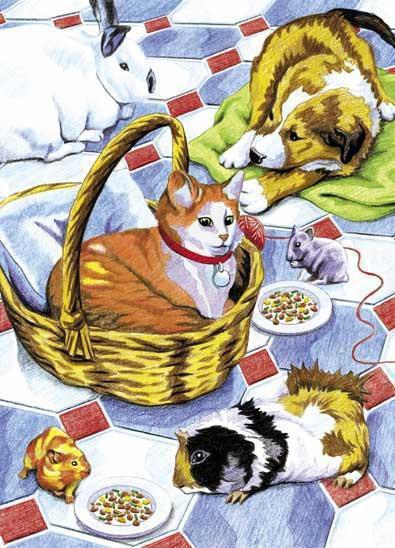 Malen nach Zahlen Haustiere mit Buntstiften