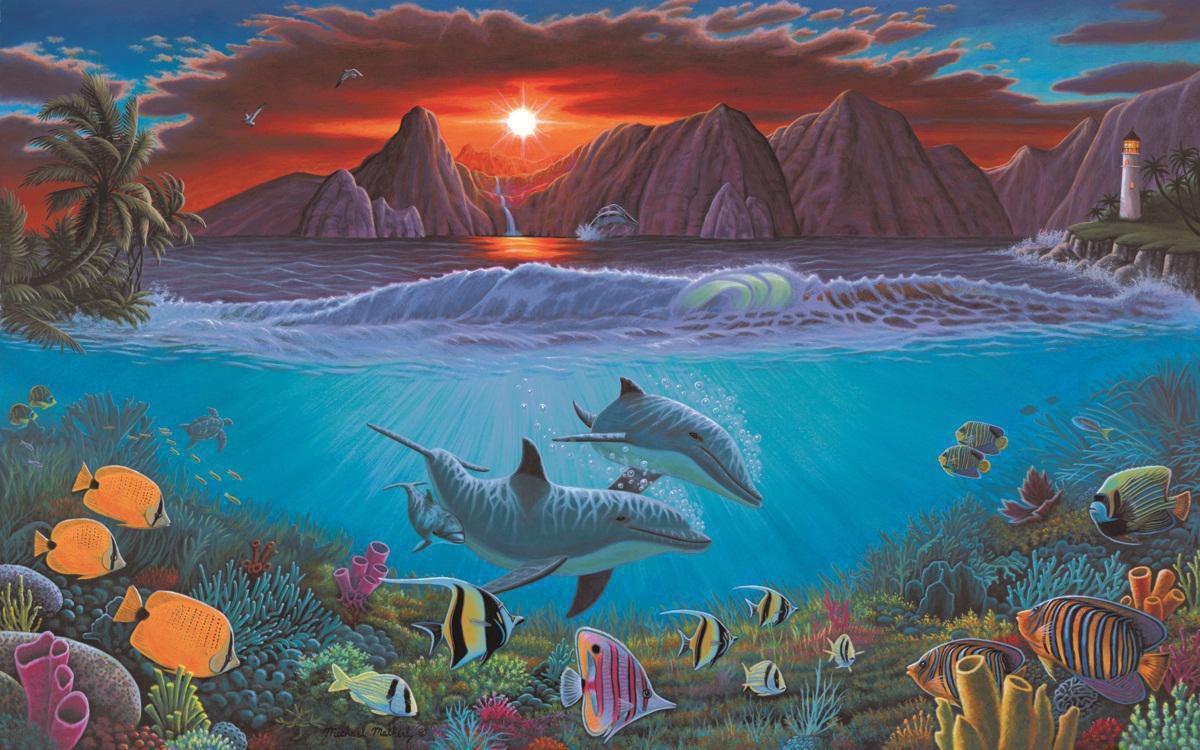 Malen Nach Zahlen Leben Im Ozean Pal 20 Delfine