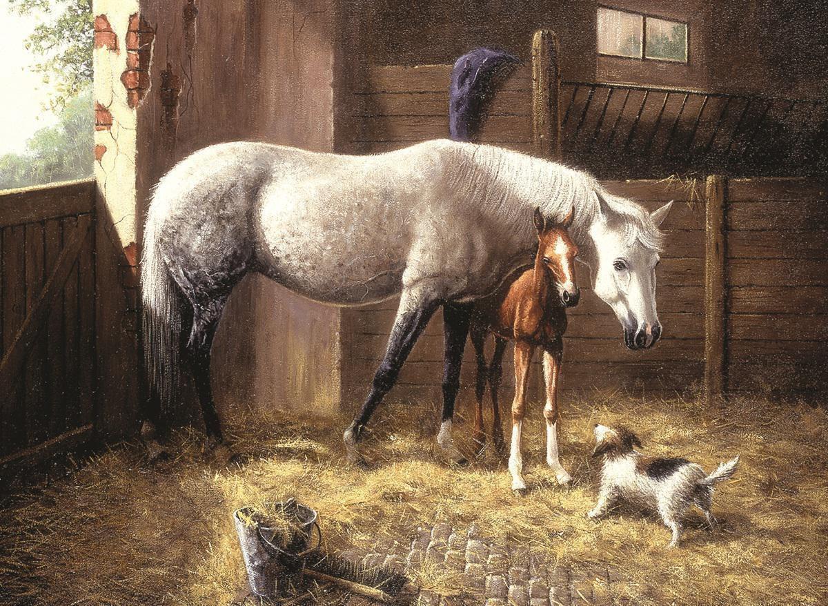 malen nach zahlen pferde pal24  royal  langnickel