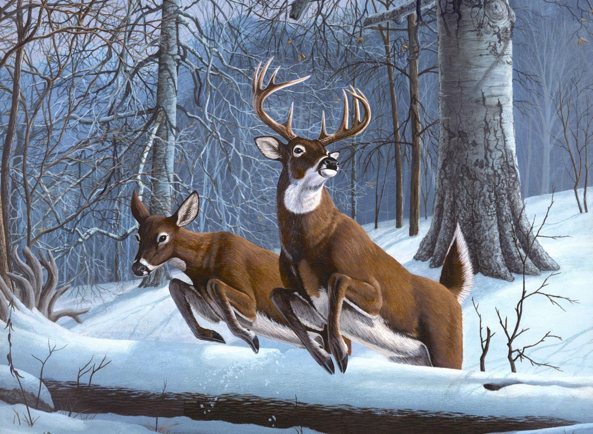 Malen Nach Zahlen Hirschpaar Im Schnee