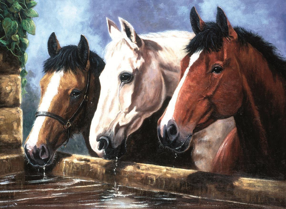 malen nach zahlen pjl23 pferde  royal  langnickel