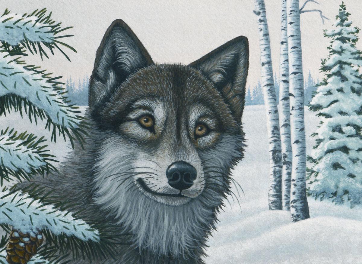 Malen nach Zahlen Schnee Wolf PJL29 | Royal & Langnickel ...