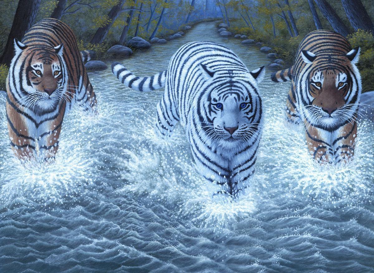 malen nach zahlen pjl34 drei tiger  royal  langnickel