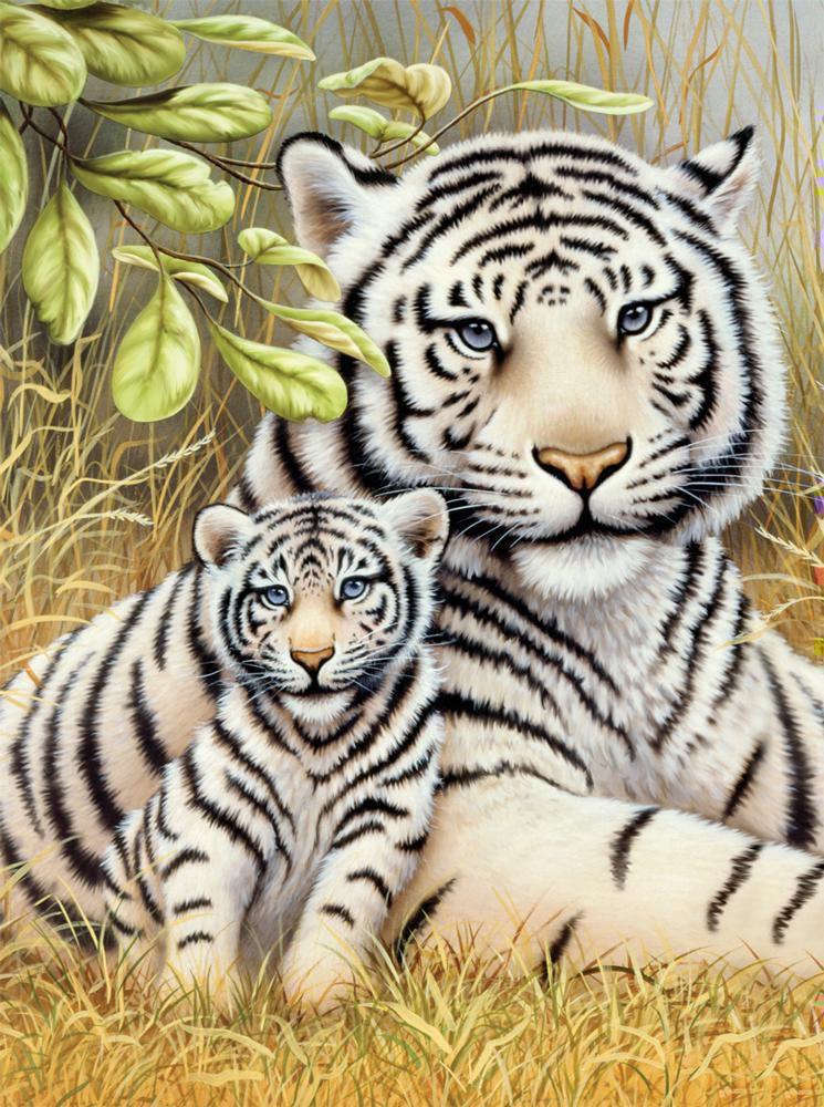 Malen Nach Zahlen Weiße Tiger Pjs76